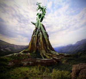 Giant Beanstalk